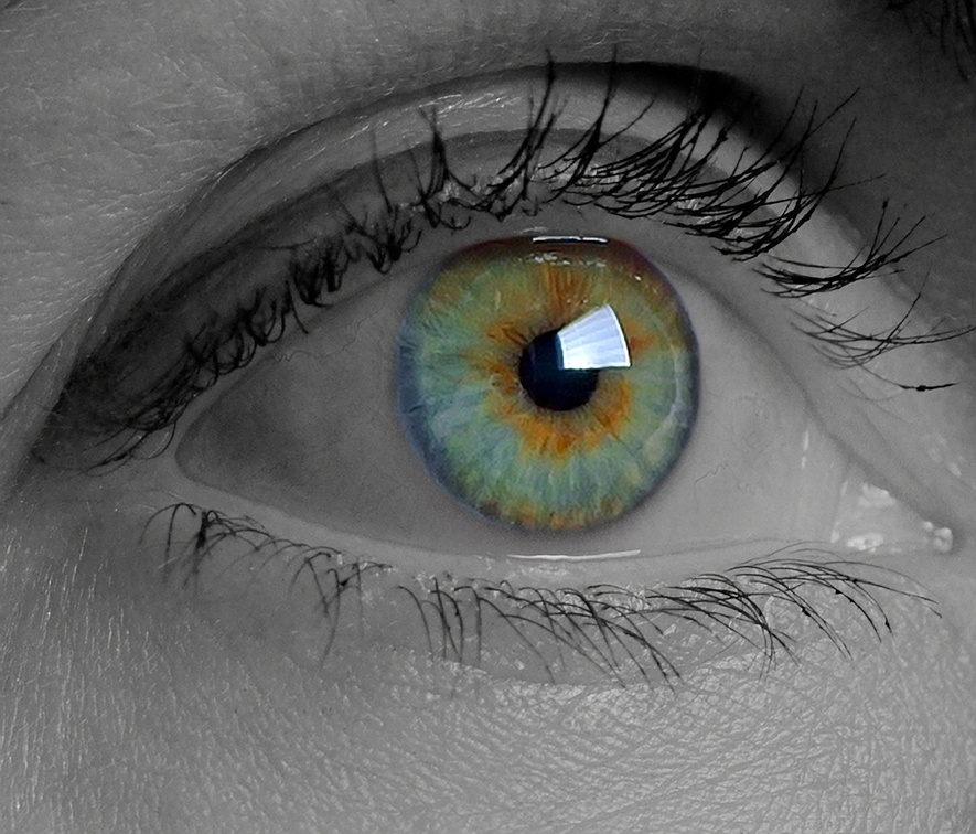 oeil - flickr.jpg