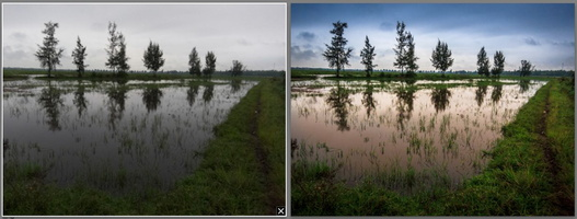 Modification des couleurs (Lightroom 4)