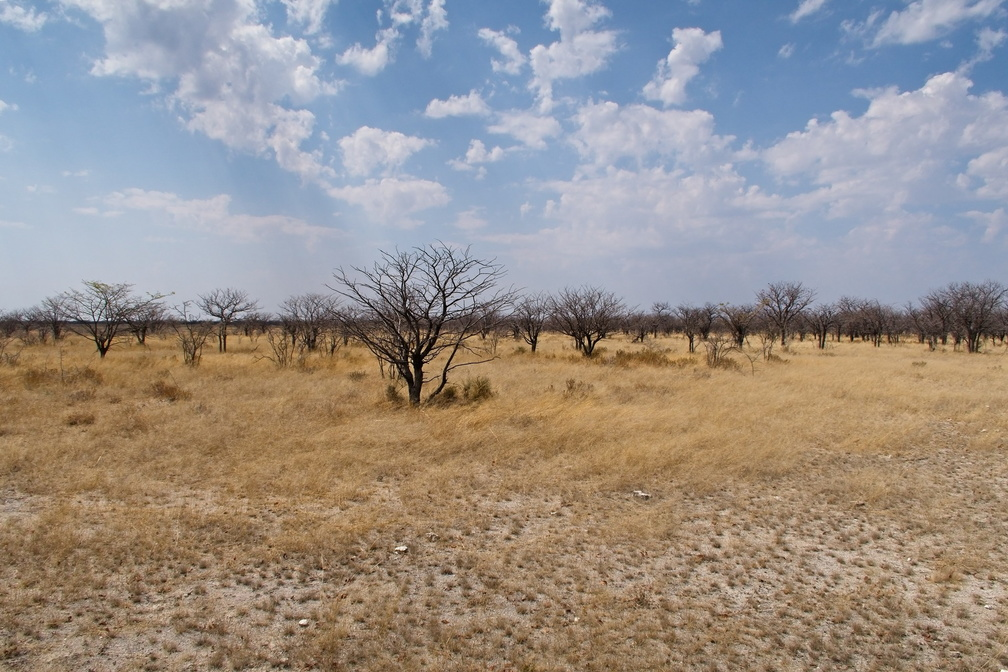 Namibie G7X - 1 - 001 - final.jpg