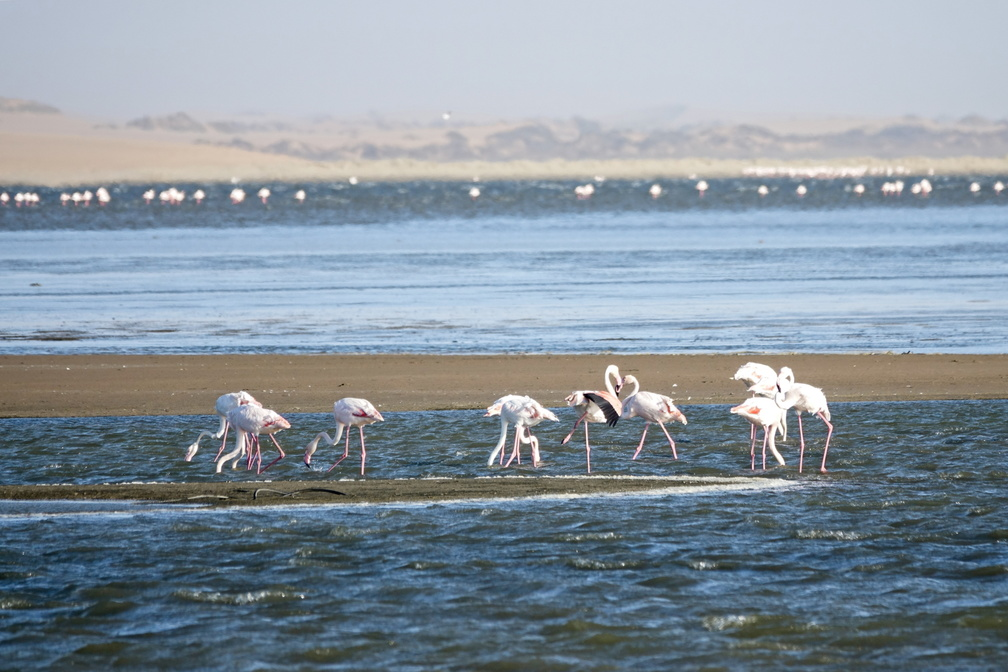 Namibie Sony - 1 - 1081 - final.jpg